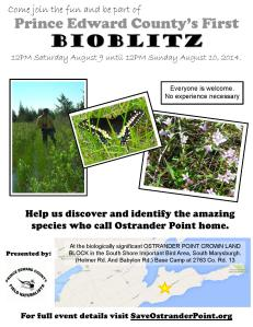 BioBlitz poster FINAL low colour-page-001